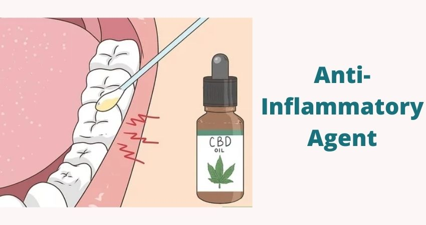 Using CBD Against the Toothache